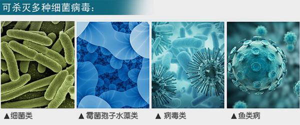 水产养殖紫外线杀菌器可杀灭多种细菌病毒