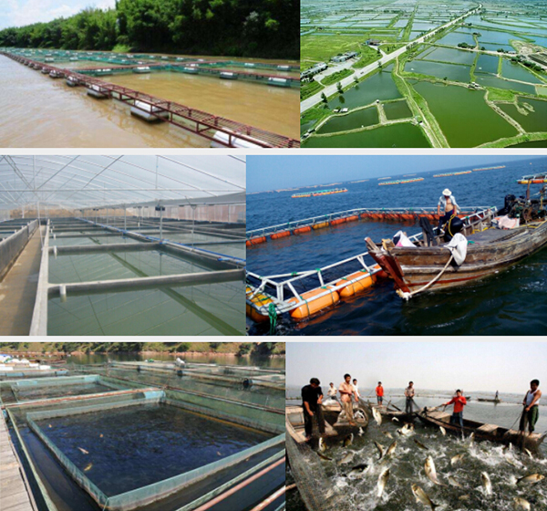水产养殖紫外线杀菌器适用范围
